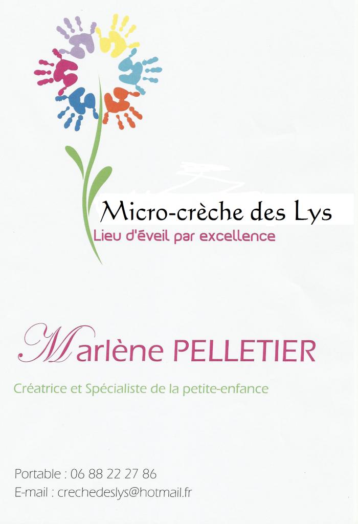 Micro Crèche Des Lys